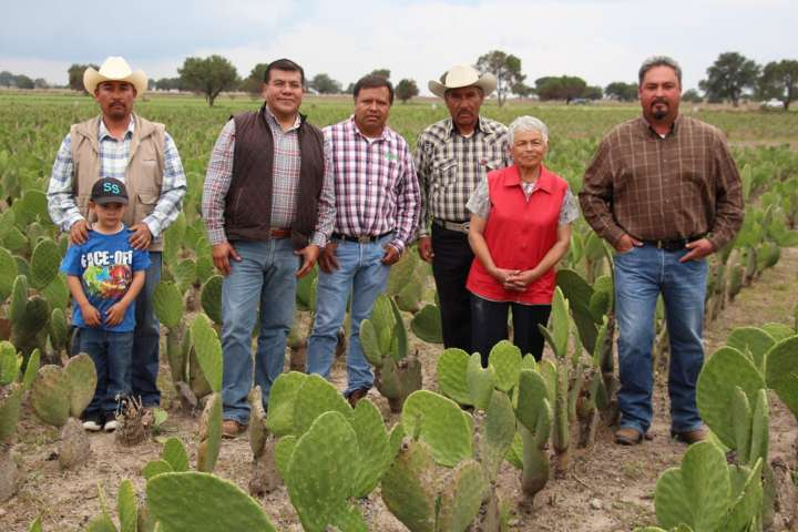 Con asistencia técnica Sefoa fortalece producción primaria en Tlaxcala