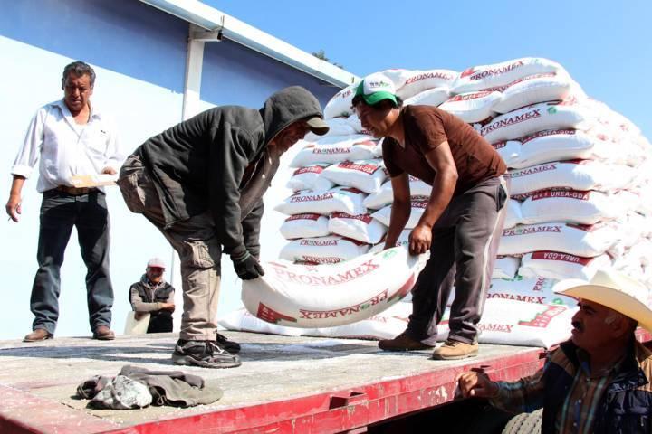 Invierte Gobierno del Estado 38 mdp en fertilizante para productores agrícolas
