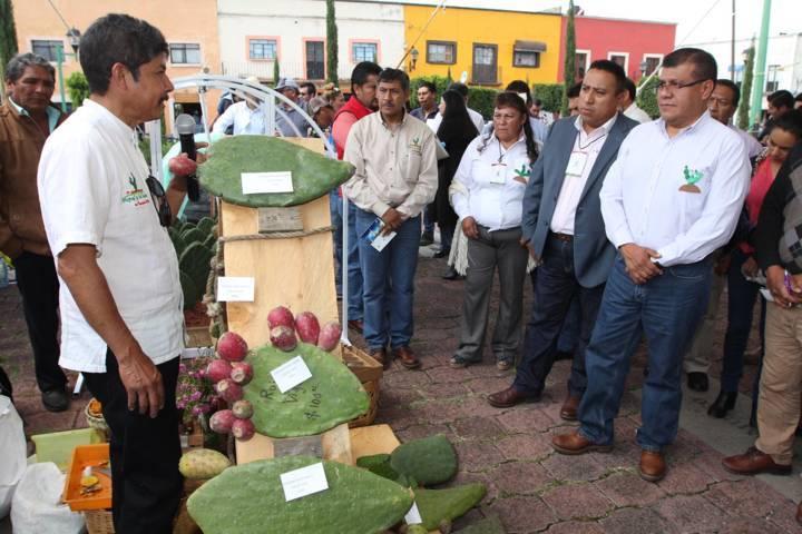 Realiza SEFOA la segunda edición del Día Del Nopal y Tuna en Tlaxcala