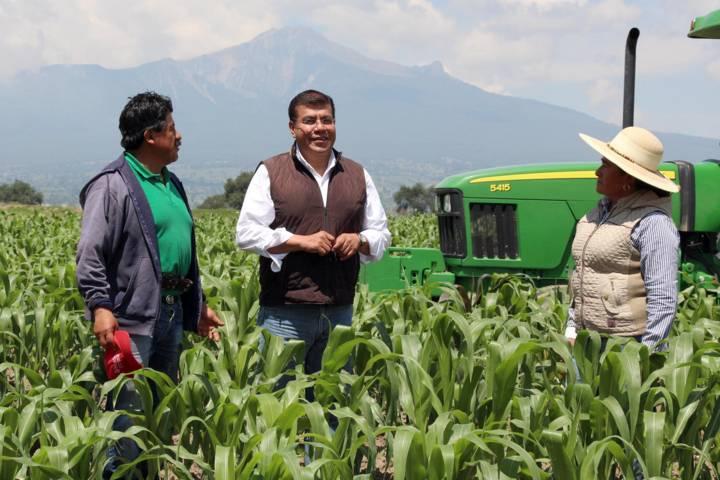 Amplía Gobierno Del Estado en más de siete mdp subsidio de fertilizantes y semillas