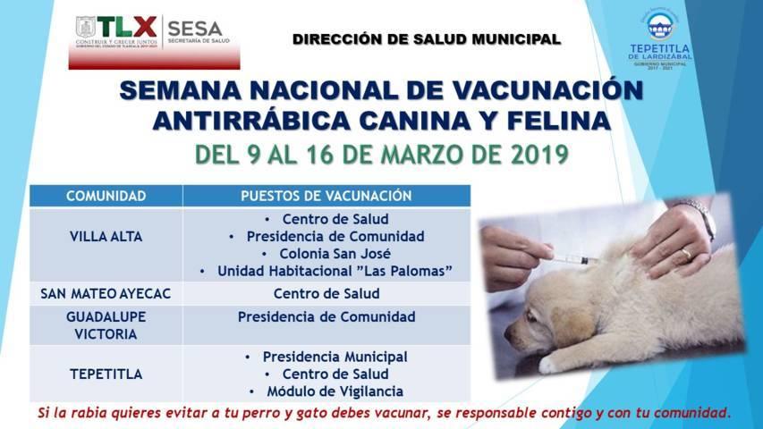 Gobierno Municipal de Tepetitla invita a ciudadanía vacunar a sus mascotas