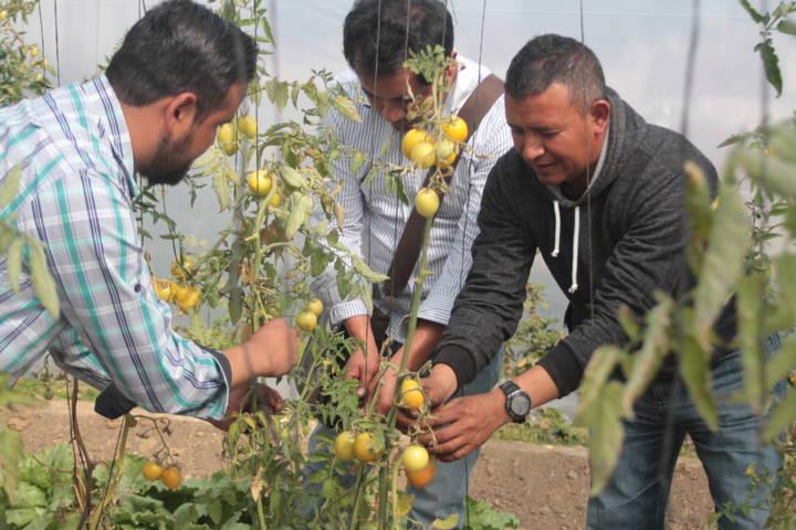 Alumnos del CBTA 134 de Tetlanohcan realizaron prácticas en área didáctica ambiental