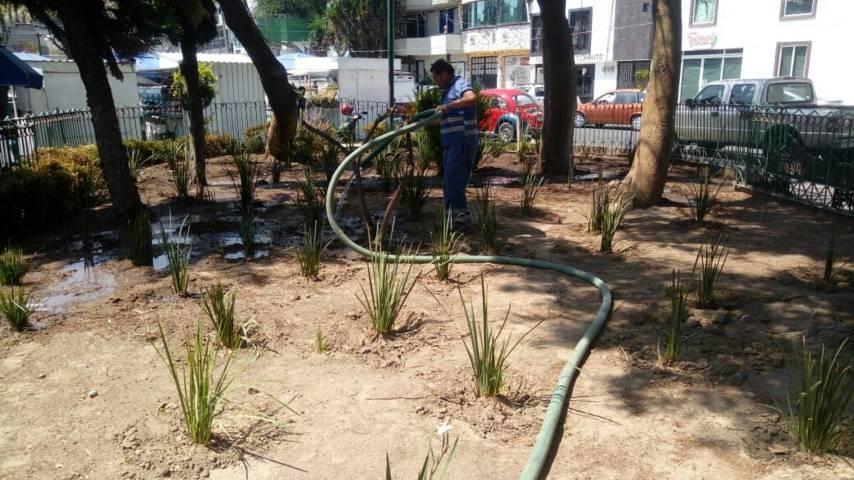 Realizan mantenimiento constante en calles y espacios públicos de la capital