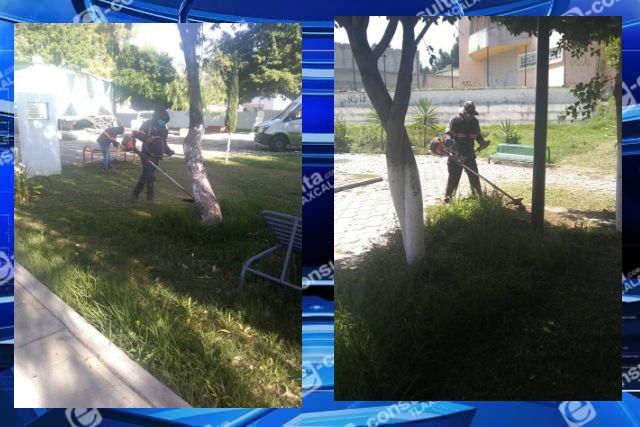 Dan mantenimiento a parques y jardines en Chiautempan