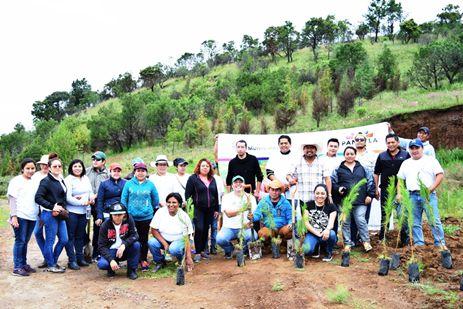 "Arranca en Panotla programa de reforestación ""Oxigena a tu familia"""