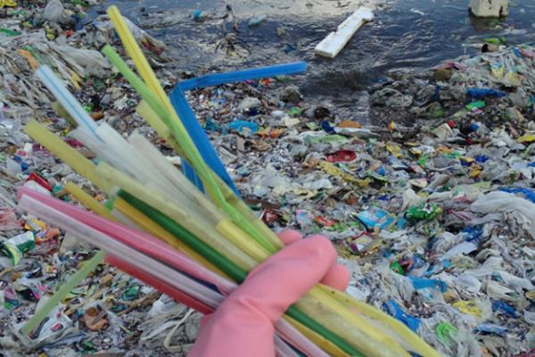 Prohíben el uso de popotes, bolsas de plástico y recipientes de unicel en Tlaxcala