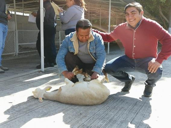 Entrega Giovanni Pérez apoyos para fortalecer el campo en Totolac