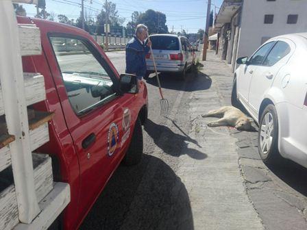 Realizan limpieza de áreas de la escuela Miguel Aleman