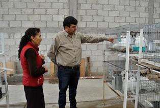 Impulsa Tlaxco programa de asistencia para la producción de conejo