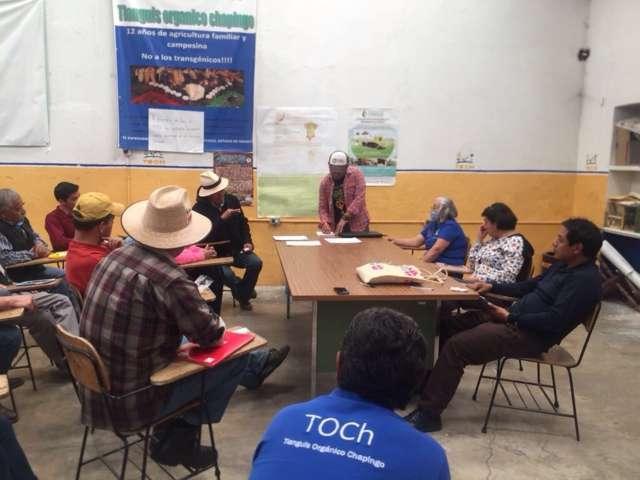 Tianguis orgánicos solución a problemas de comercialización agrícola: MPG