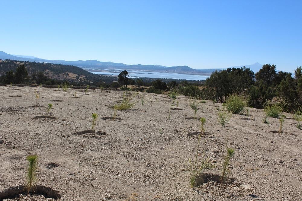 Inaugura CONAFOR presa para riego en Altzayanca, Tlaxcala