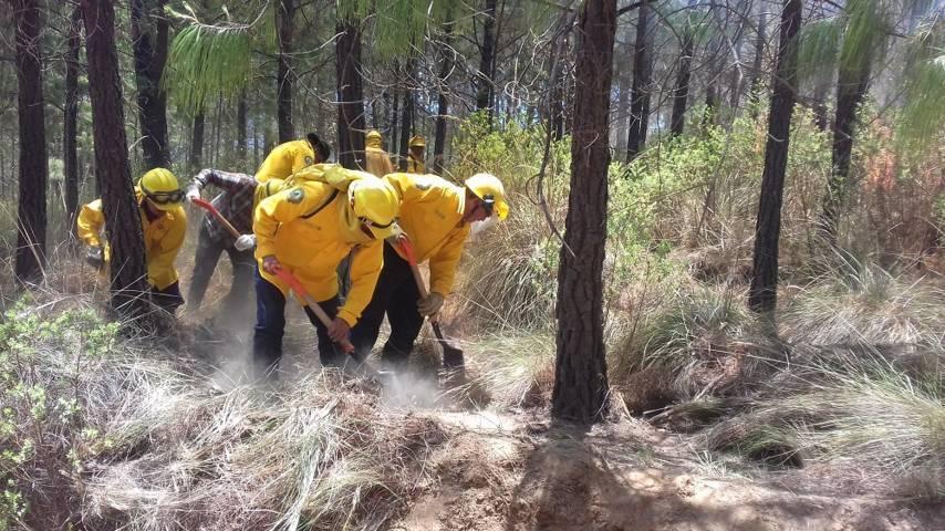 Inician en Tlaxcala prácticas de prevención de incendios forestales