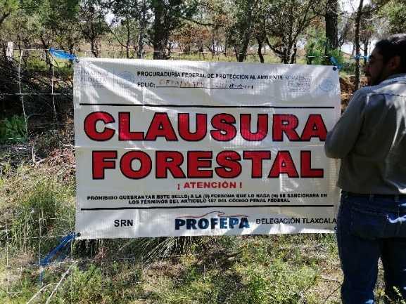 Clausura Profepa obras y actividades por cambio de uso de sueloen terreno forestal en Tlaxco