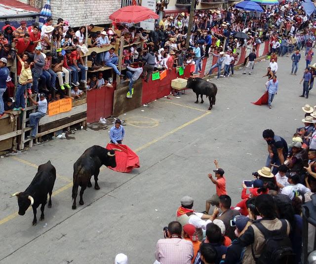 Da SESA de alta a cinco lesionados de la Huamantlada