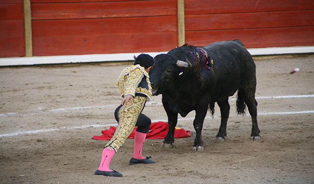 Triunfa Gerardo Rivera en su debut como torero