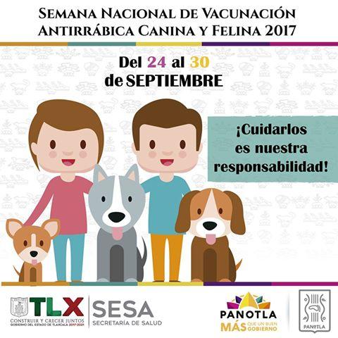 En Panotla ponen en marcha Semana nacional de Vacunación Antirrábica