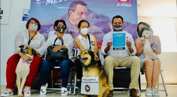 SAGA recibe agenda de Colitas Felices en pro del bienestar animal