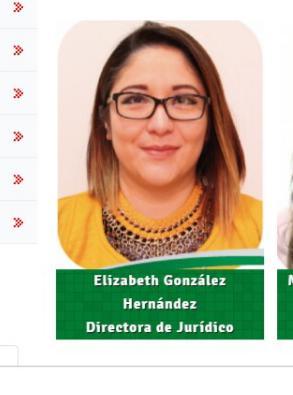 Jurídico de Jasso atropella y mata a una; ella recibe atención en clínica privada y con custodia municipal