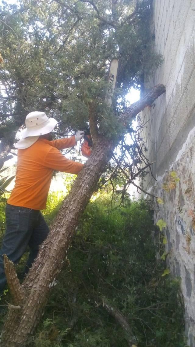 Ayuntamiento realiza acciones preventivas a favor de la ciudadanía