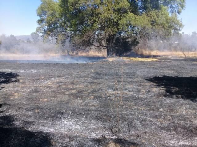 Protección Civil brinda apoyo ante conatos de incendios reportados en el municipio