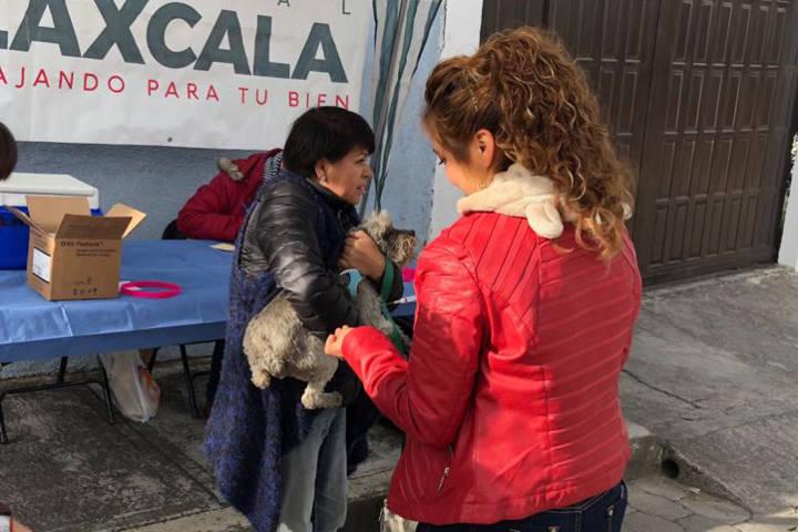 Intensifica comuna capitalina Jornada Médica y Campaña de Vacunación Antirrábica