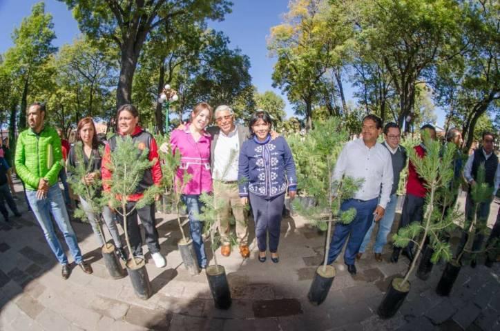Entrega alcaldesa Anabell Ávalos mil árboles piñoneros