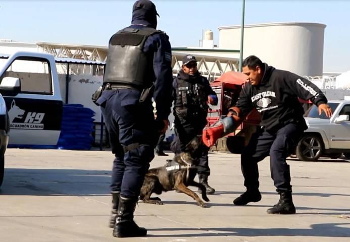 Dan a conocer Operativos y agrupamientos de Seguridad Pública en Apizaco