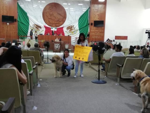 Seguirá la matanza de toros y peleas de gallos en Tlaxcala