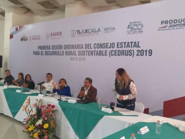 Pide diputada Michaelle Brito Vázquez se respeten los derechos de los campesinos
