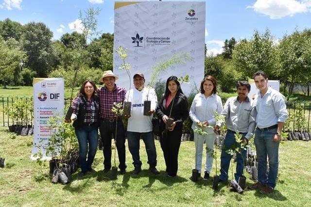 TOA entregara 5,000 árboles para conmemorar el Día Mundial del Árbol