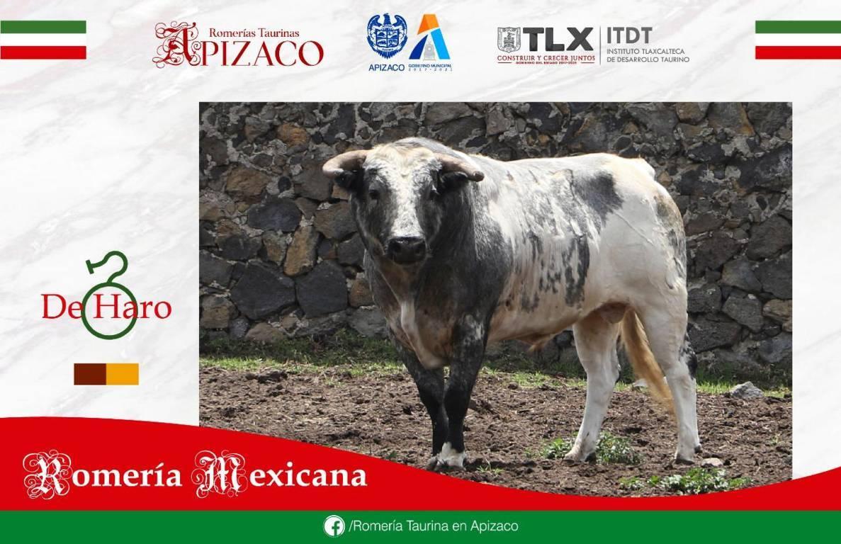 5 toros de prestigiosas Ganaderías en la Romería Mexicana Apizaco
