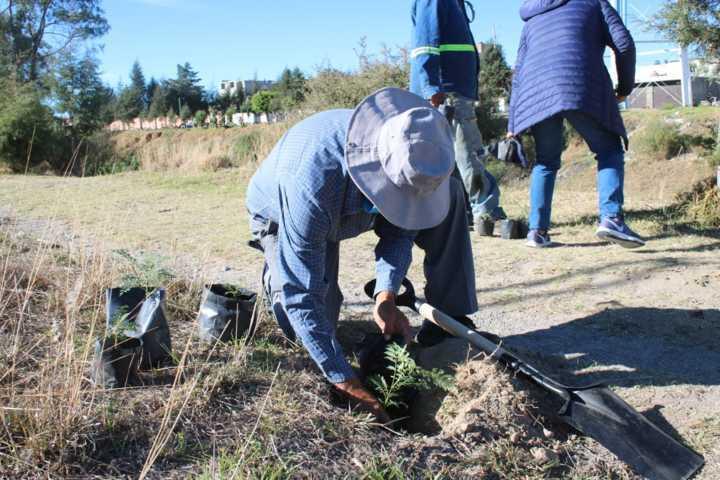Conmemora Chiautempan Día Mundial Del Medio Ambiente con plantación de jacarandas