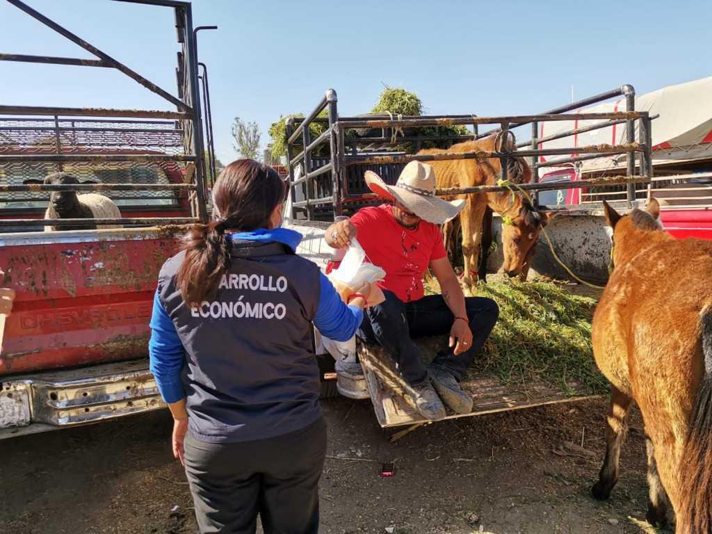 Zacatelco refuerza sus filtros sanitarios