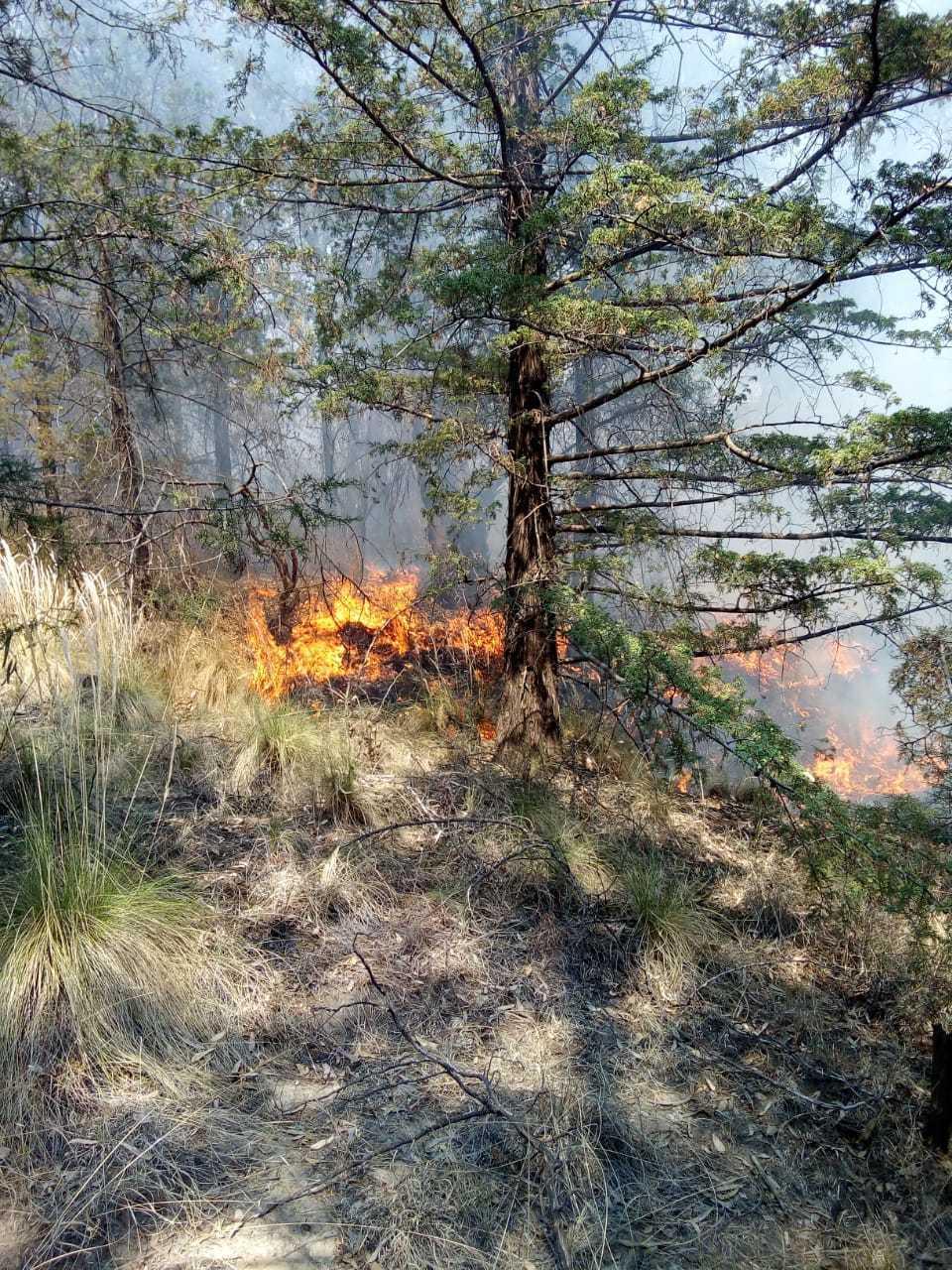 PC Ixtacuixtla atiende incendios por temporada de estiaje