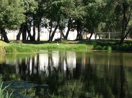 Ayuntamiento de Xicohtzinco puso en marcha operativo ecológico