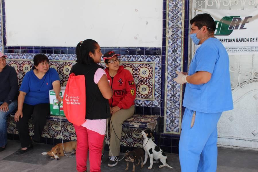Ayuntamiento evita proliferación de perros y gatos con esterilización